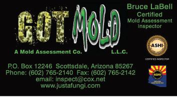 2-9909_Got-Mold-Biz-Card-front